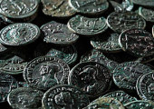 Фермер из Швейцарии нашел в саду древнеримские монеты