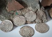 Житель Чехии нашел 700 монет, относящихся к X столетию